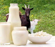 Produits au lait de chèvre